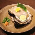 料理メニュー写真岩カキ (お刺身)