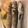 新鮮な魚介類を厳選して使用しております!季節に合わせた旬な鮮魚を取り扱っているため、いつ来ても飽きません♪