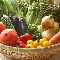 季節の旬な無農薬野菜料理