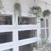 ■ビー玉の部屋■ 木のぬくもりがGood!壁にはビー玉が散りばめられてます。なんとプチ外庭も有り♪