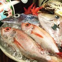 全国の新鮮魚介を毎日入荷しているので魚が旨い!