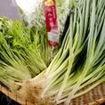 産者様が真心込めて作ってくれた京野菜は甘みもふくよかでやはり美味しいです。どの料理の付け合わせにしても相性が良く、有機・特別栽培の京野菜は作り手の志を感じます。ぜひ一度ご賞味ください。