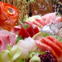 相模湾の朝採れ鮮魚◎