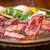 ジンギスカン ホルモン酒場 風土. 札幌駅前店のおすすめ料理3