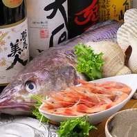イサキの香草焼き、アクアパッツァ、白貝のマリナーラ…