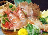 鮮魚料理 居酒屋ちゃき 生田本店のおすすめ料理2