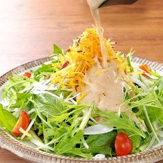 料理メニュー写真7種野菜の農場サラダ~自家製玉ねぎドレッシング~