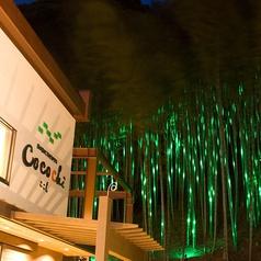 緑の谷のごちそうテラス CoCoChi ここちの雰囲気3