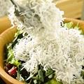 料理メニュー写真釜揚げしらすと豆腐のサラダ