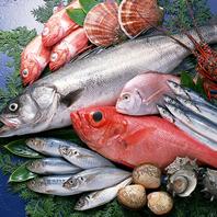 産地直送の厳選地鶏と鮮やかな旬魚の数々