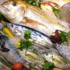 魚菜や 朝次郎 アミュプラザ長崎店の特集写真
