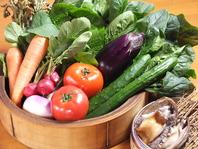 JA直送の新鮮野菜♪