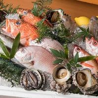 市場直送の魚料理!