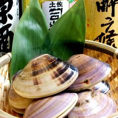 はまぐり水族館.neo 岡山駅前店の特集写真