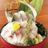 さかなや道場 津田沼店のおすすめ料理3