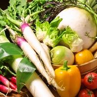 地元三浦の新鮮季節野菜