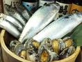 新鮮な魚にはこだわって仕入れます。