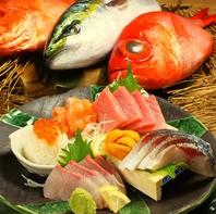 【必食】金沢漁港直送、原価率80~90%の刺盛り