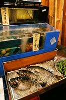 新鮮・美味しい魚が自慢♪