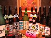 【新潟の地酒20種飲み放題】新潟を語る上で外すことの出来ない日本酒。穏坐では20種飲み放題コースをご用意!