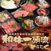 焼肉 どうらく 横浜西口本店 横浜駅のグルメ