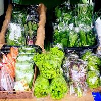 ■新鮮な京野菜■