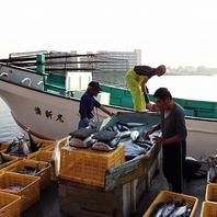 長井港の入札権を所有!仲買人の目利きで選ぶ新鮮魚介