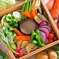 料理メニュー写真季節の無農薬野菜のせいろ蒸しバーニャカウダ(1人前)
