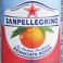 サンペレグリノ ブラッドオレンジ