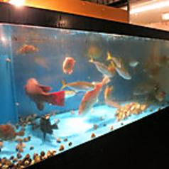 生簀料理 魚の蔵 三重四日市の写真