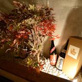 izakaya くら田の雰囲気2