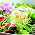 料理メニュー写真彩り野菜のラーメンサラダ焙煎ゴマ仕立て