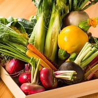 契約農家から仕入れる新鮮野菜/新潟地酒も豊富!
