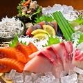 料理メニュー写真本日の湘南刺身 (3点盛り)