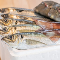 【創業164周年】三浦鮮魚卸売会社直営で安くて美味しい