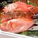 旬の天然魚とおいしい海の幸!