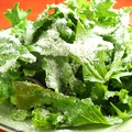 料理メニュー写真シンプルグリーンサラダ