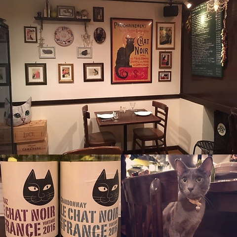 看板猫のいる隠れ家のような小さなビストロ。美味しいワインと料理で普段着のパリを♪