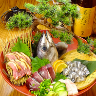 市場直送!新鮮旬魚の刺身盛りがなんと…500円!