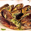 料理メニュー写真下津井のムール貝のワイン蒸し