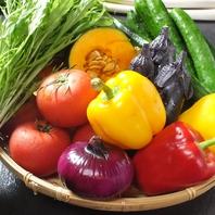 宮城県内の新鮮野菜を満喫★