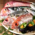 料理メニュー写真■当店は魚市場直送です!『福岡産 鰆』『長崎産 本マグロ』『福岡産 穴子』『長崎産 赤むつ』など