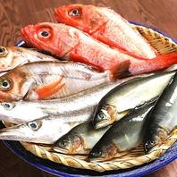 ≪毎朝、築地で買い付けをした新鮮な旬の鮮魚≫