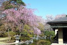 昭和の森 車屋の写真