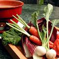 料理メニュー写真産直野菜のバーニャカウダ
