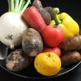 野菜類も瑞々しい旬野菜を使い、メインの魚介や肉の味を引き立ててます。