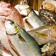 市場直送の鮮魚を様々な調理法で…