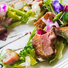 料理メニュー写真合鴨燻製ハムのサラダ バルサミコドレッシング