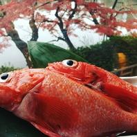朝採れの新鮮魚介☆