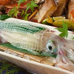 博多 魚蔵のコース写真